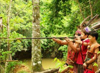 Viajes de aventuras por Malasia - Belum Rainforest