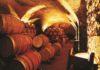Cubas de vino Tannat
