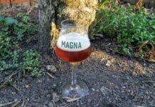 Cerveza Magna roja de san miguel